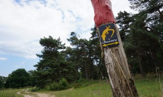 Wahner Heide – Wo bitte geht's hier zum Strand?
